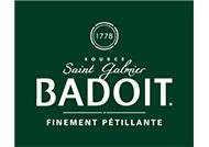 Logo-partenaire_DANONE-Badoit-Vert