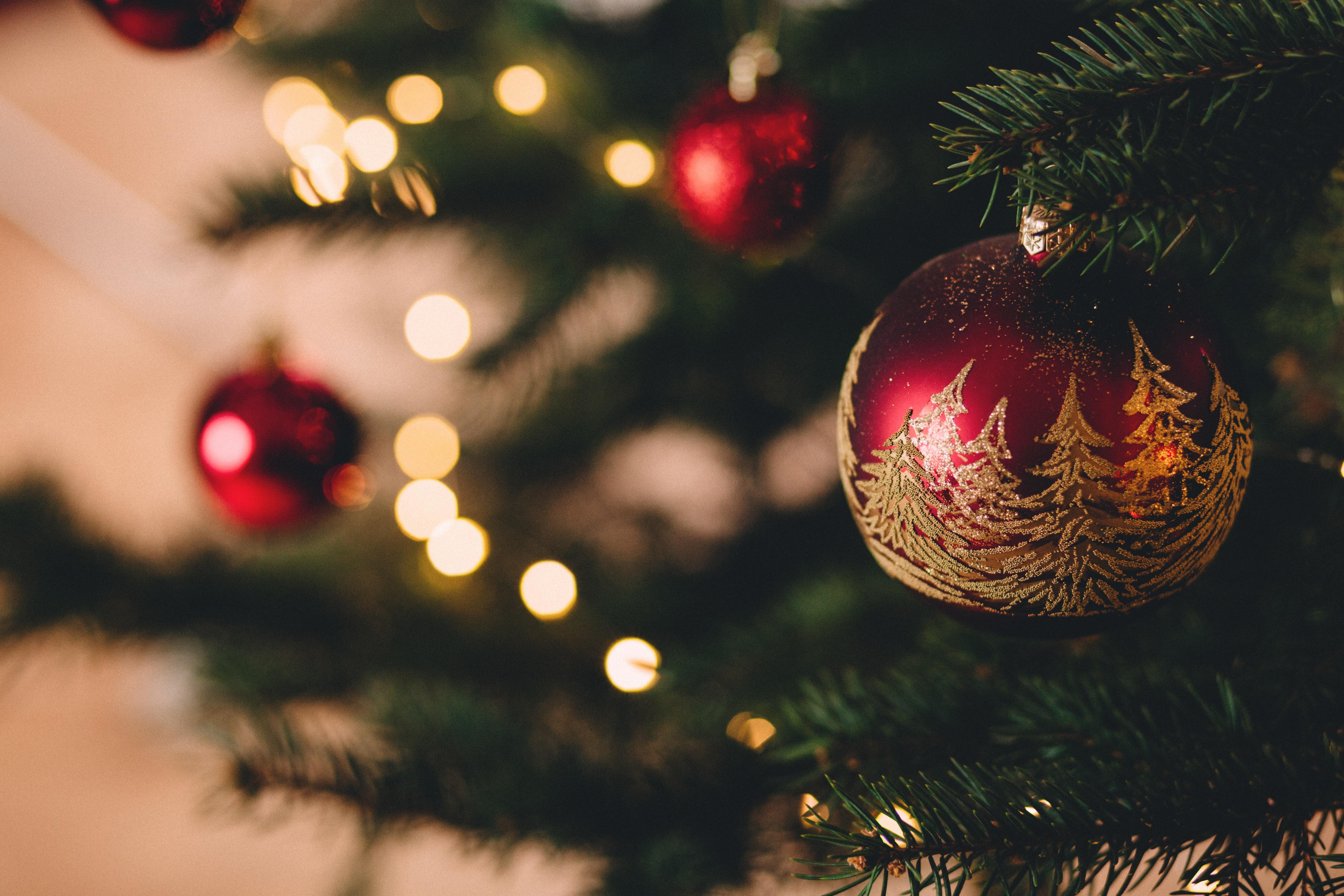 Les bûches de Noël 2017